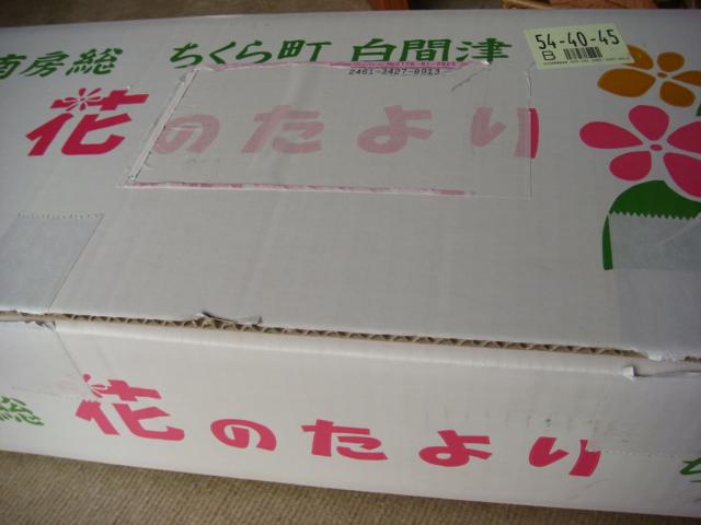 20080128_bousou_08566.JPG