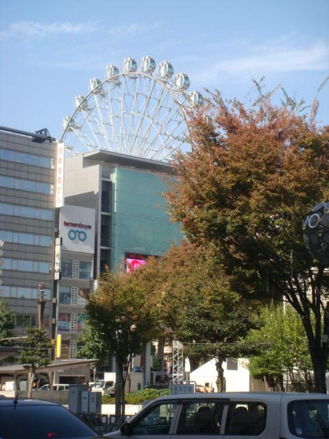20081105_sakae_09535.JPG
