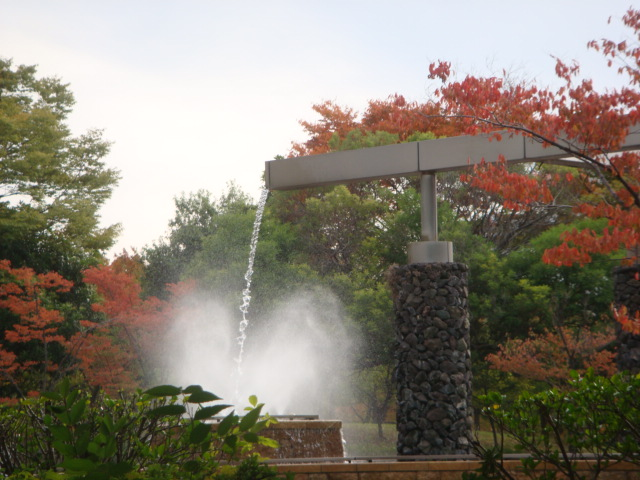 20081110_jinguu_09722.JPG
