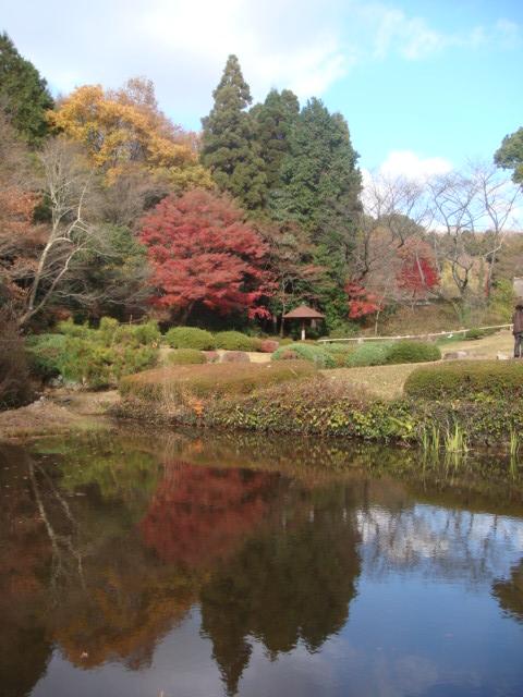 20081206_higasiyama_00557.JPG