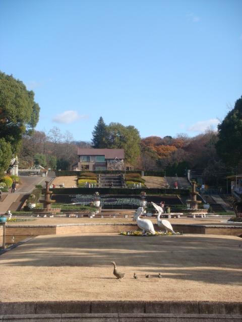 20081214_higasiyama_00871.JPG